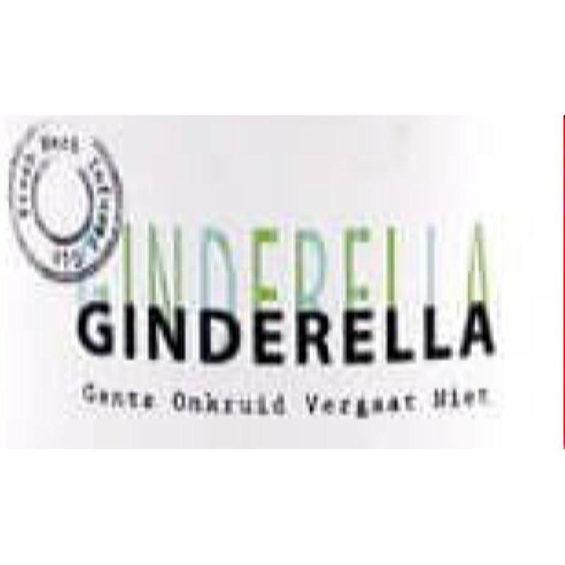 Ginderella